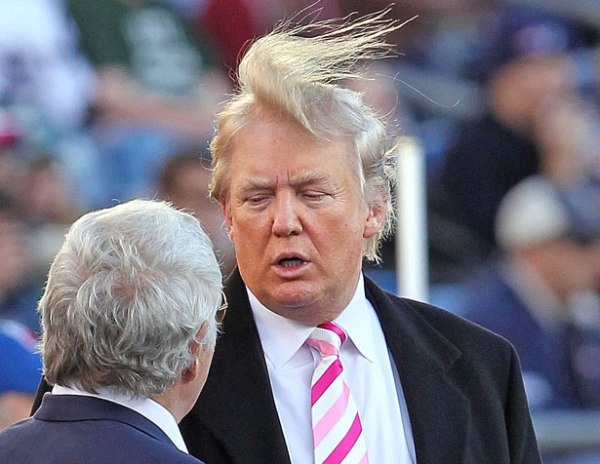 donald-trumps-hair